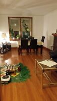 Beautiful 1 bed room downtown appartment for March 1,2016