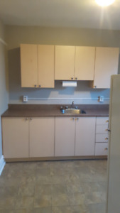 Newly renovated Bachelor Apartment to rent