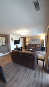 Bright  Fully Furnished Suite
