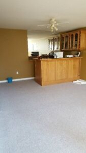 One bedroom basement in excellent condition- West Abbotsford