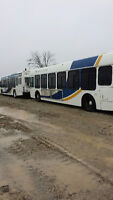 1999 Orion Transit buses for sale!