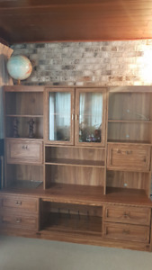 Entertainment/Bookcase Unit For Sale
