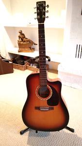 Simon and Patrick acoustic electric guitar