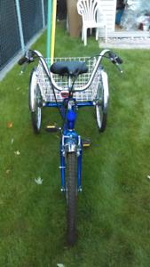 Vélo trois roue