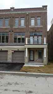 Brand New Townhouse For Rent In Stouffville!!