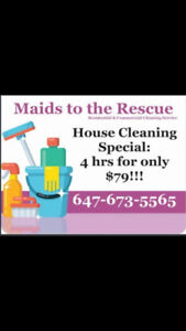 Great House Cleaning Special: 4 hrs for only $79!!!
