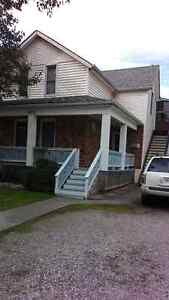 IMMACULATE 3 BD & 2 BTHS MOVE IN READY - AVAILABLE IMMEDIATELY!