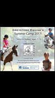 Summer camp intro to horseback riding