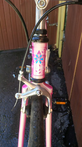 80's Fiori Modena road bike, new Gator skins tires, 700c steel