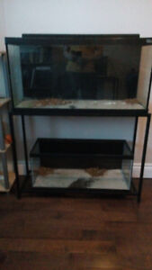 Various fish tanks and stands for sale