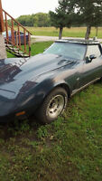 1979 Chevrolet Corvette Coupe (2 door)