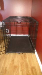 Kong dog crate