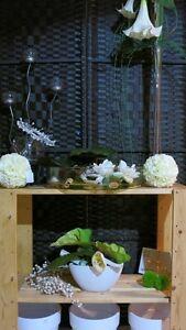 Fond de commerce pour fleuriste