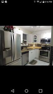 House for rent brampton