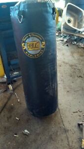 Everlast Boxing bag for sale $100.00