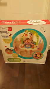Jumperoo Fisher-Price Brand new