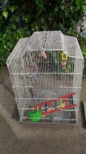 New Bird Cage with Accessories