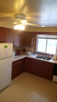 Clean quiet room for rent 1 year lease