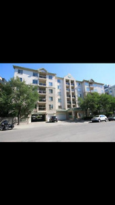 Great downtown 2BR condo for rent
