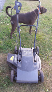 Black & Decker Electric Lawn Mower - Work Great!