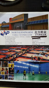 Liquidation Sale! New Table Tennis Equipment