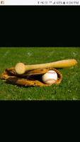 Ladies slo pitch team in need of players