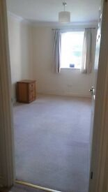 Double bedroom to rent in shared flat in Horsham, short walk to town centre and parking available