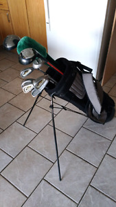 Golf clubs with stand bag