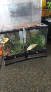 Reptile cages, zoomed dual light