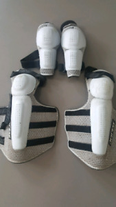 Dainese Knee and Elbow Guards