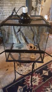 Terrarium pour reptiles