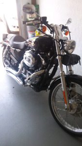 LOW KMS HARLEY DAVIDSON 1200 SPORTSTER CUSTOM LOW KMS