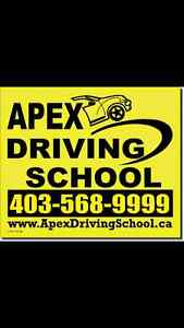 Driving school  and brush up course $100