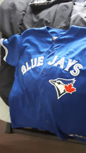 Large Blue Jay's Lowry Jersey