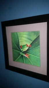 Lenticular Frog Wall Picture (2-D alive lens print)! Xposted