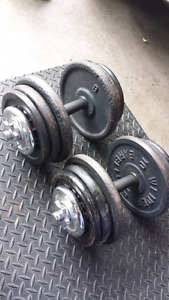 Adjustable spin lock dumbells and weight plates