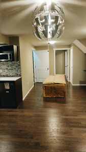 1 Bedroom Basement Suite - Newly Developed, Move in Immediately!