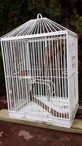 Bird cage Prince George British Columbia image 1