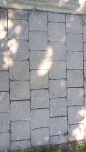 Gray Interlock stone / pavers