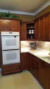 Kitchen cabinets with appliances