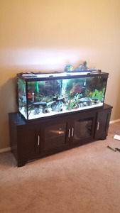 55 gallon tank with all goodies to make a great underwater world