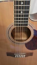 Freshman 12-string electro-acoustic guitar