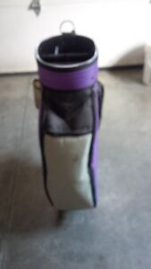 Ladies or Mens golf bag - $15 Cambridge Kitchener Area image 2