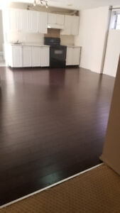 basement for rent in coral springs