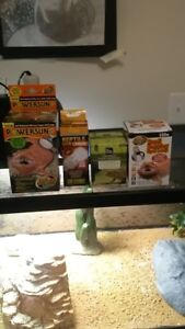 reptile equipment and accessories