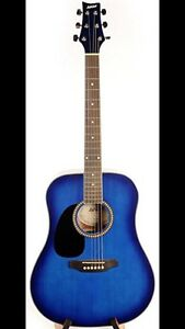 Looking to by acoustic guitars  blue color thanks