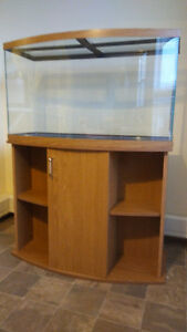 Beautiful 40 Gal Bow Front Aquarium with stand