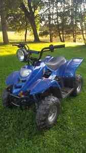 110cc TaoTao ATV Quad 4x2