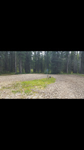 Full hook up Rv stall in edson on 5 acres