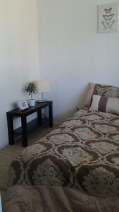 Cozy Room in a Central Location - 30 mins from DT